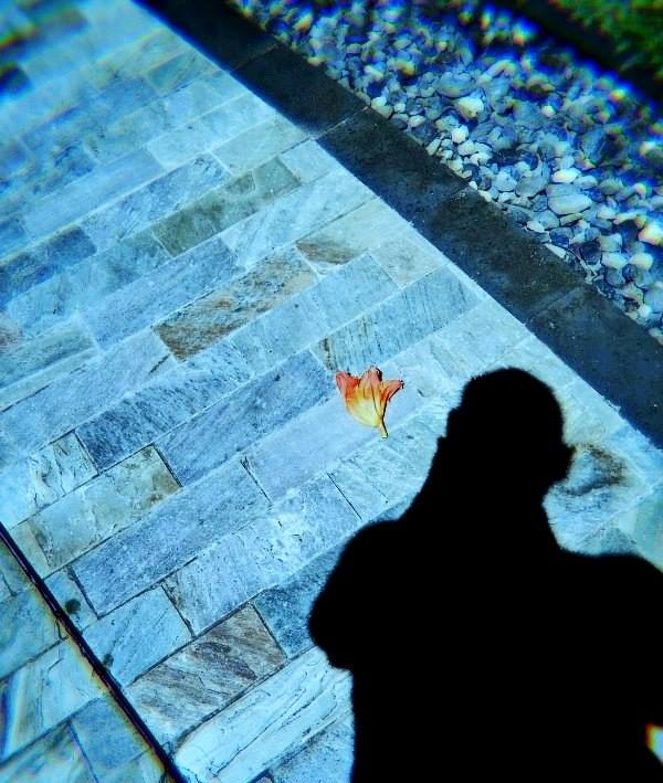 A fallen tulip and my shadow (photo taken at the Boracay Shangrila, April 2013)